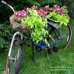 Bicycle planter.jpg