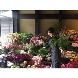 Flowers house 16may16 instagram amy_merrick_b_426x639.jpg