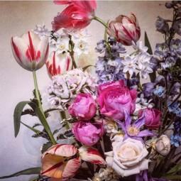 Flowers house 16may16 instagram florastarkey_b_426x639.jpg