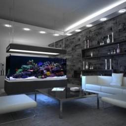Gut ... Aquarium Designs Wohnzimmer Schwarz Weisse Einrichtung ...