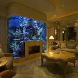 Schone Aquarium Ideen Nettetipps De
