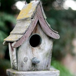 Beautiful bird house designs you will fall in love with 3.jpg
