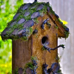 Beautiful bird house designs you will fall in love with 6.jpg