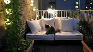 Ideen gemuetlichen balkon katze romantik leuchten lichterkette weisse moebel.jpg