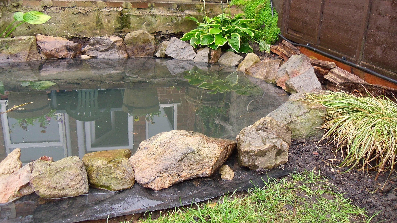 Ein Netter Teich F 252 R Euren Garten Nettetipps De