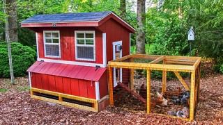Chicken coop 5x6 with chicken run 2.jpg
