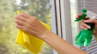 Fensterputzen titelbild 3.jpg