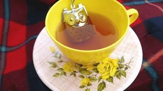 Creative tea infusers 2 32 605 1.jpg