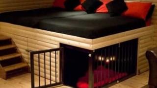Original and creative bed designs 14 554x432.jpg