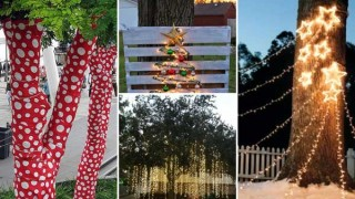 Decorate outdoor tree this christmas.jpg