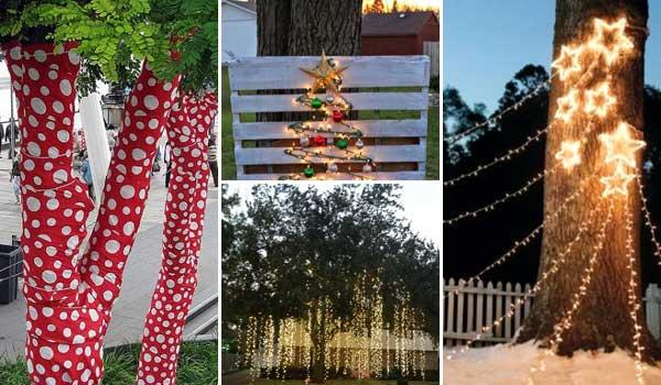 b ume im garten weihnachtlich schm cken. Black Bedroom Furniture Sets. Home Design Ideas