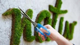 Moos graffiti wanddeko selber machen 1.jpg