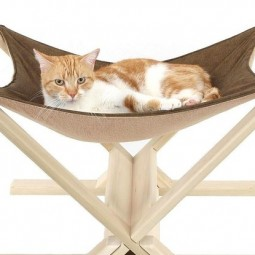 Purrfect christmas gifts for your cats 2 18296 1417651868 5_dblbig.jpg