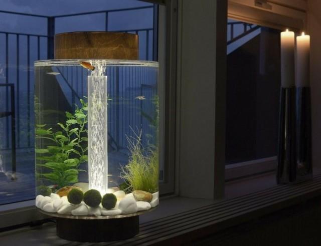 Moderne Aquarium Ideen Nettetipps De