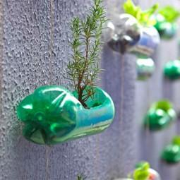 Xplastik flaschen recycling haengender garten 2 1.jpg.pagespeed.ic_.ojumk1lgoi 1.jpg