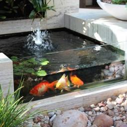 5 creative aquarium.jpg