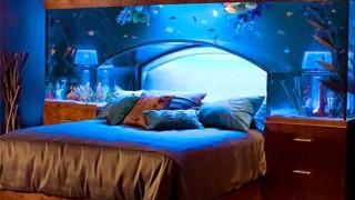 Top 7 aquarium designs for your interior design5.jpg
