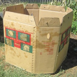 A cardboard bulk box makes for a perfect compost bin.jpg