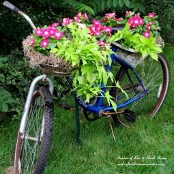 Bicycle planter.jpg