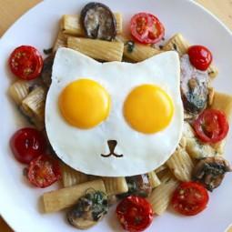 Cat egg 3jpg.jpg