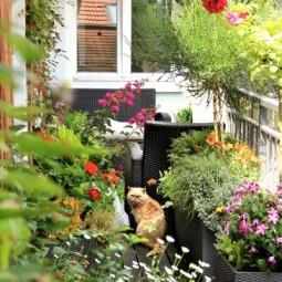 Fruehling auf balkon und terrasse 09.jpg