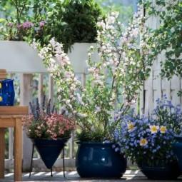 Fruehling balkon garten gestaltung ideen holz gelaender hohe pflanzen.jpg