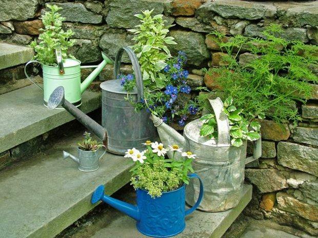 Gie kanne als gartendekoration - Topfpflanzen garten ...
