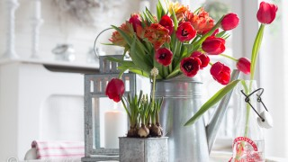 Red_tulips_spring_decor 4.jpg