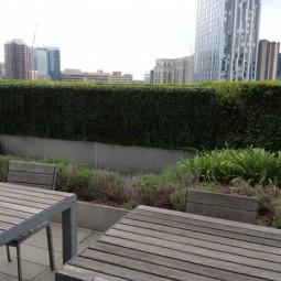 Artificial hedging.jpg
