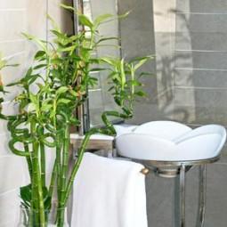 Bambus blaetter.jpg