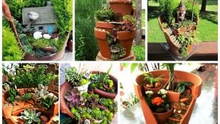 Garden_in_broken_pot_4.jpg
