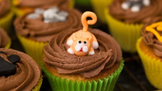 Ginger cat cupcake 700.jpg
