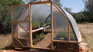 Greenhouse made from pallets.jpg