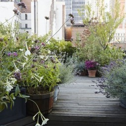 Manhattan roof garden decking potted plants gardenista.jpg