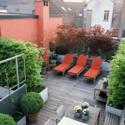 Private roof garden.jpg