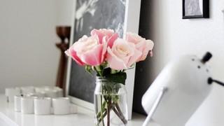Rosas idea.jpg