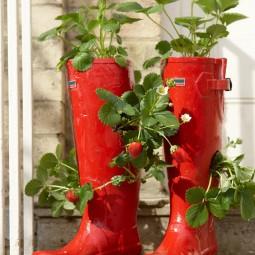 Rx dk rsg07301_strawberry boots_s3x4.jpg.rend_.hgtvcom.966.1288.jpg