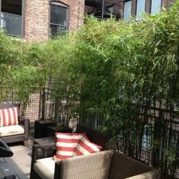 Terrace garden privacy ideas 3.jpg