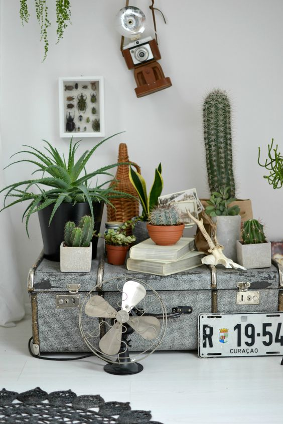 Deko aus alten koffern - Deko aus alten brettern ...