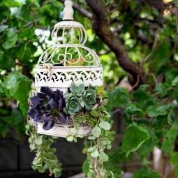 Birdcage succulent planter.jpg