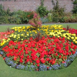 Blumenbeet anlegen gartenarbeit planung pflanzen blumen sonnig standort.jpg