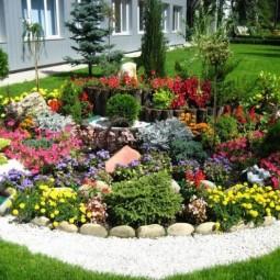 Blumenbeet mit steinen gartengestaltung steine busch kieferbaeume weisse kiesel 1.jpg