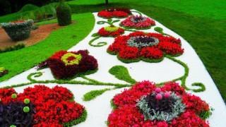 Blumenbeet mit steinen weisse kieselsteine rote blumen busch flaschenform baeume 1.jpg