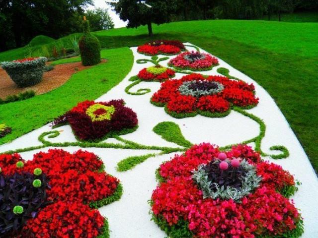 Blumenbeet Mit Steinen Weisse Kieselsteine Rote Blumen Busch Flaschenform  Baeume 1