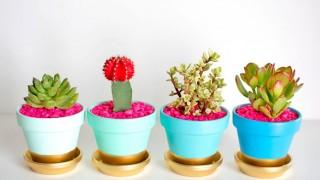 Gold dipped plant pots1.jpg