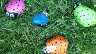 Painted stone bugs.jpg