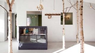 Baum haus interior dekoration beauty salon einrichtung design onico ryo isobe 1.jpg