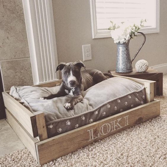 kreative hundebetten. Black Bedroom Furniture Sets. Home Design Ideas