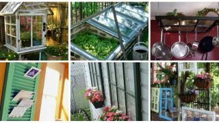 Collage 10.jpg