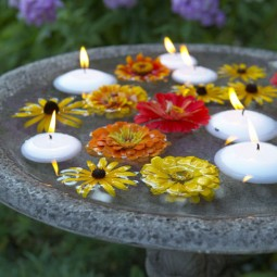 Floating candles birdbath.jpg